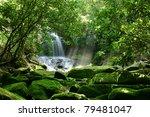 hidden rain forest waterfall... | Shutterstock . vector #79481047
