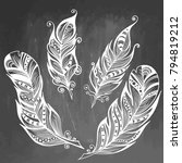 feather hand drawn vector... | Shutterstock .eps vector #794819212