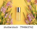 bottle of skin care product... | Shutterstock . vector #794863762