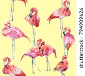 flamingo illustrations pattern | Shutterstock . vector #794909626