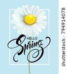calligraphic inscription hello...   Shutterstock .eps vector #794914078
