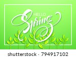 hello spring with paper green... | Shutterstock .eps vector #794917102