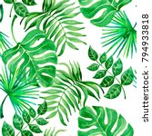 watercolor seamless pattern...   Shutterstock . vector #794933818