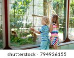 little boy and girl watch funny ... | Shutterstock . vector #794936155
