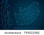 abstract mash line and point... | Shutterstock .eps vector #795022582
