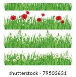 green grass collection | Shutterstock .eps vector #79503631