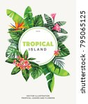 tropical flyer with palm leaves ... | Shutterstock .eps vector #795065125