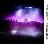 fantasy landscape  night in the ... | Shutterstock . vector #795257812