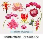 beautiful hand drawn botanical... | Shutterstock .eps vector #795306772