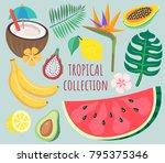 tropical fruit vector... | Shutterstock .eps vector #795375346