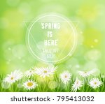 spring floral background... | Shutterstock .eps vector #795413032