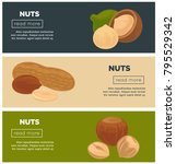 healthy nutritious nuts... | Shutterstock .eps vector #795529342