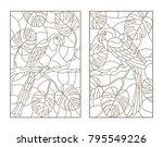 set contour illustrations with