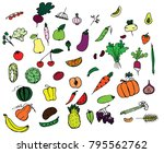 a variety of vegetables and...   Shutterstock .eps vector #795562762