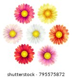 big set of beautiful colorful... | Shutterstock .eps vector #795575872