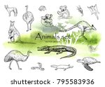 vector hand drawn monochrome... | Shutterstock .eps vector #795583936