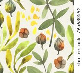 seamless watercolor floral...   Shutterstock . vector #795630592