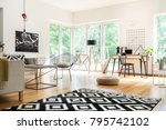 black and white carpet and pouf ...   Shutterstock . vector #795742102