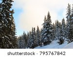 snowy winter forest in the alps | Shutterstock . vector #795767842