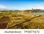 agriculture in the countryside... | Shutterstock . vector #795877672