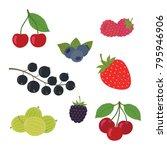 berries set vector illustration....   Shutterstock .eps vector #795946906