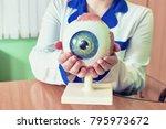 ophthalmology oculus sample...   Shutterstock . vector #795973672