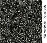 sunflower seeds seamless... | Shutterstock .eps vector #79601995