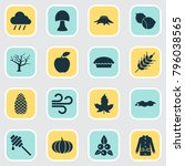 autumn icons set with timber ... | Shutterstock .eps vector #796038565