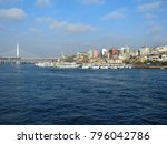 istanbul  turkey   january 6...   Shutterstock . vector #796042786