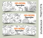 sketch of isolated banners with ... | Shutterstock .eps vector #796071976