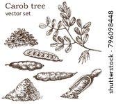 Sketch Of A Carob Tree Vintage...