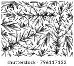 sea vegetables  illustration... | Shutterstock .eps vector #796117132