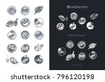 blueberries   detailed hand... | Shutterstock .eps vector #796120198