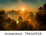 Sunset forest with sunrays through treetops in Cyprus dramatic HDR shot. - stock photo