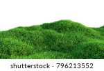 green grass field isolated on... | Shutterstock . vector #796213552