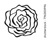 sketch line drawing of rose... | Shutterstock .eps vector #796303996