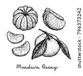 mandarin orange set. ink sketch ...   Shutterstock .eps vector #796373242