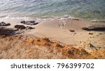 beach at formentera spain | Shutterstock . vector #796399702