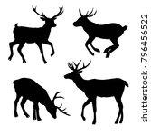 beautiful noble proud sika deer ...   Shutterstock . vector #796456522