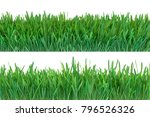 green grass set. nature... | Shutterstock . vector #796526326