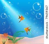 The Underwater World  Plants ...