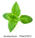 fresh herb  peppermint leaves... | Shutterstock . vector #796637872