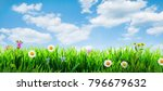 Spring Grass Background With...