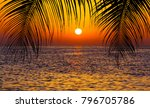 palm trees silhouette on sunset ... | Shutterstock . vector #796705786
