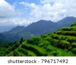 a field of cloud terrace in... | Shutterstock . vector #796717492