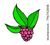 raspberry vector illustration.... | Shutterstock .eps vector #796742848