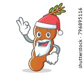 santa tamarind mascot cartoon... | Shutterstock .eps vector #796895116