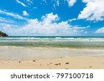 cape tribulation in tropical... | Shutterstock . vector #797100718