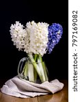 black background with hyacinths ... | Shutterstock . vector #797169082