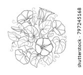 vector round bouquet with... | Shutterstock .eps vector #797245168